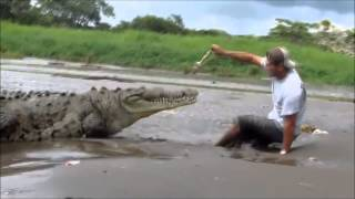 How to not feed a crocodile