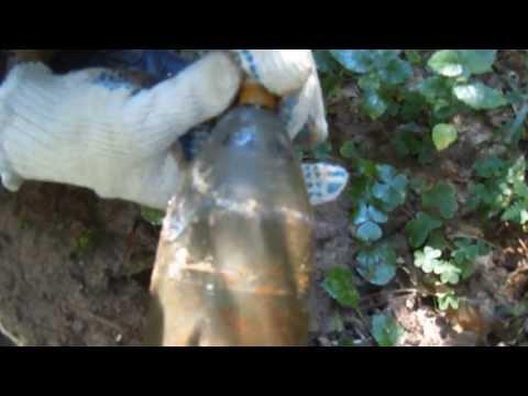 Коп Ww-2. Летний отчёт с наших болот 2012.
