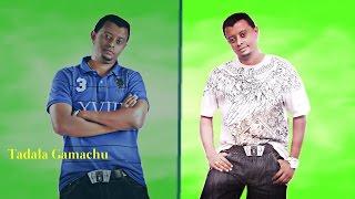 **NEW**Taddalaa Gammachu - Oromo_Music