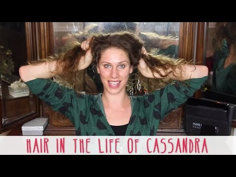MY NEW HAIR!!!!!       + Throwback: Hair In The Life Of Cassandra!!