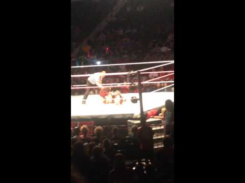 Brie Bella putting Nikki Bella in the Yes Lock