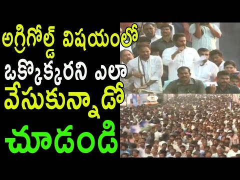 YS Jagan Controversial Comments on TDP AP Leaders | Agrigold Money Scams  Issue| Cinema Politics