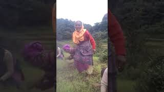 Funny lady sing