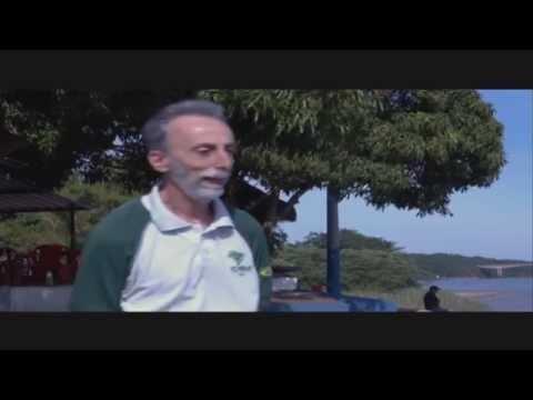 Brasil Além: Parque Nacional de Ilha Grande - Jornal Futura - Canal Futura