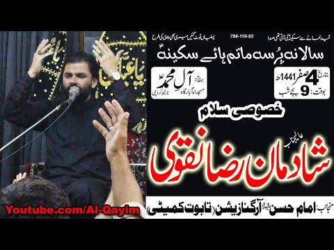 Salaam | Shadman Raza | Shahadat Bibi Sakina S.A - 4th Safar 1441/2019 - Imam Bargah AleyMohammed