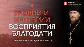 2020.06.07 Пресвятая Троица в нас и вокруг нас #проповедь иеромонах Никодим (Шматько)