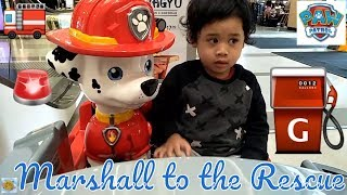 Kids playing  videos on Paw Patrol toys for kids, Marshall, Ride on toys review