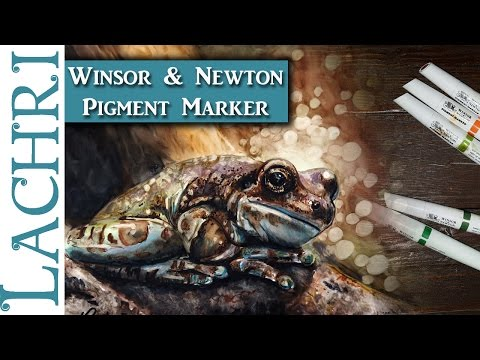 Tips & tricks w/ Winsor & Newton Pigment Marker - Frog drawing by Lachri