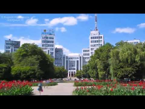 Доставка цветов Харьков - U-F-L.net  Цветы в Харьков
