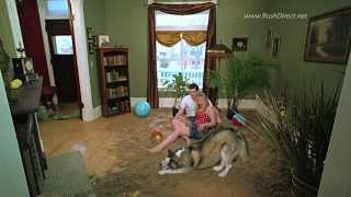 Couple creates indoor Beach for their Huskie