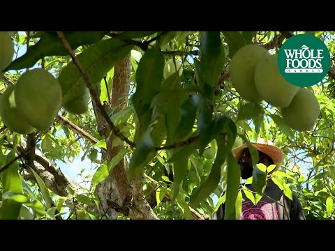 Ensuring Equitable Pay for Growers: Haitian Francis Mangoes | Produce | Whole Foods Market