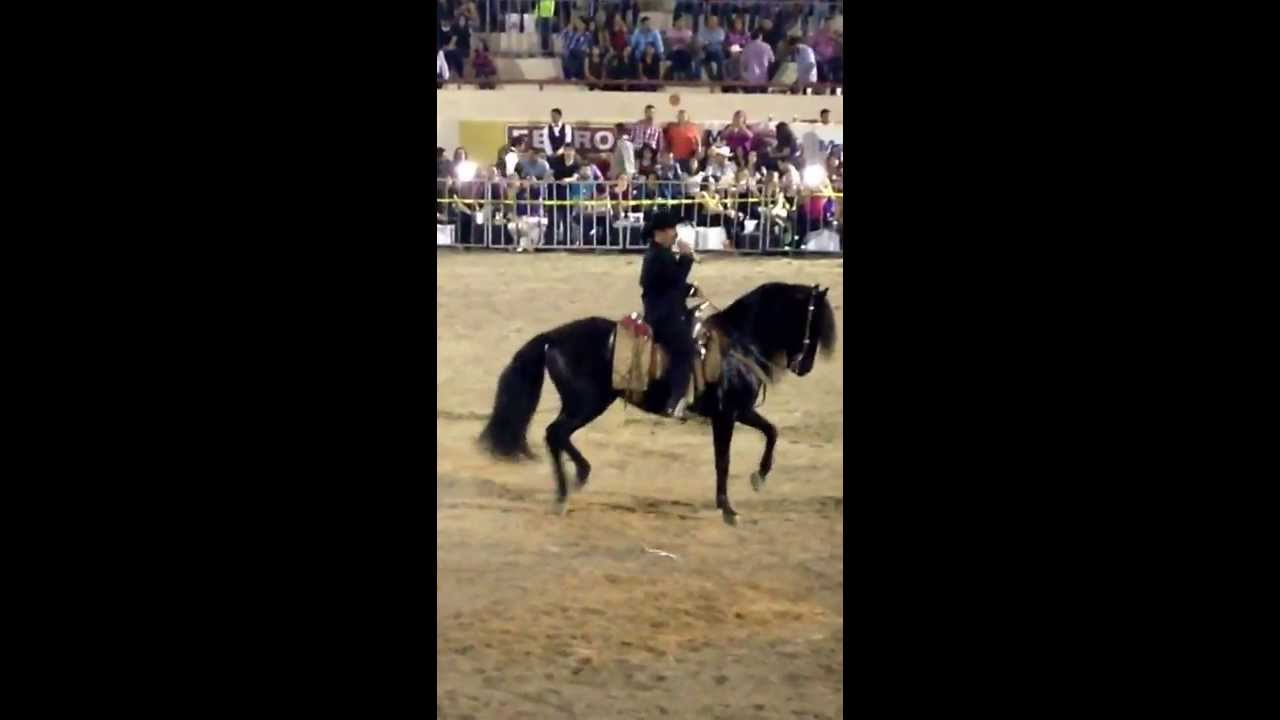 el chapo de sinaloa el sinaloense con sus caballos