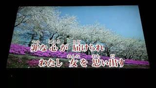 八代亜紀  花 ブーケ 束  1990