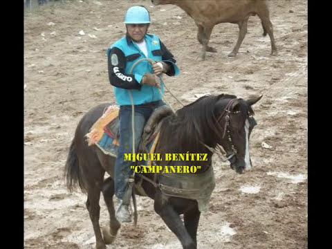 Caballo, manga y coleo-Guárico en el Master y Sol de los venados. Carora 2012