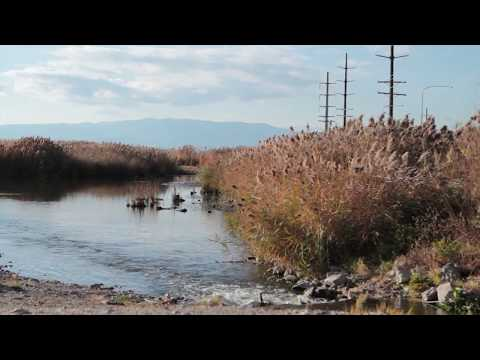 Water Quality with Dr. Greg Carling