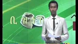 Ethiopian Business Evening News dec 4, 2015 SD quality