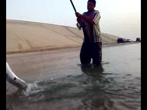 Beach fishing hakeem abu bnciana omar sea line for Fishing license for disabled person