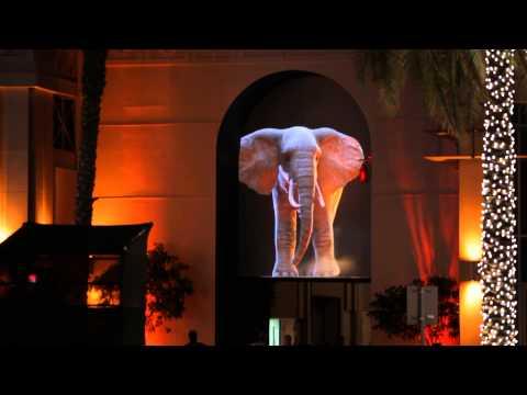 Dubai Festival of Lights 2014 - Elephantastik