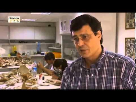 Tauchfahrt in die Antike   Versunkene Schiffe in der Ägäis Doku über die Antike Teil 1