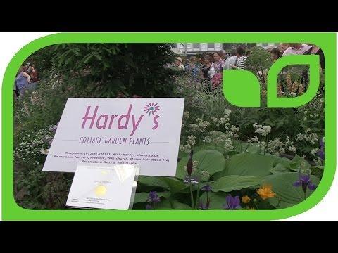 Cottage-Garten-Pflanzen An Der Chelsea Flower Show 2014
