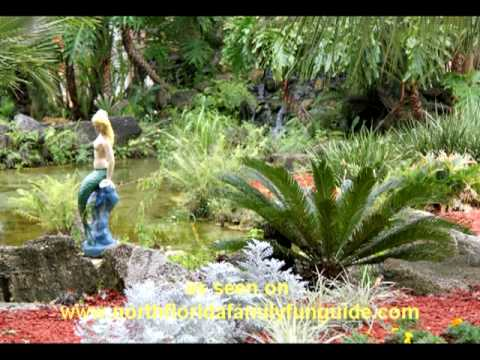 Weeki Wachee Springs State Park - Spring Hill, Florida