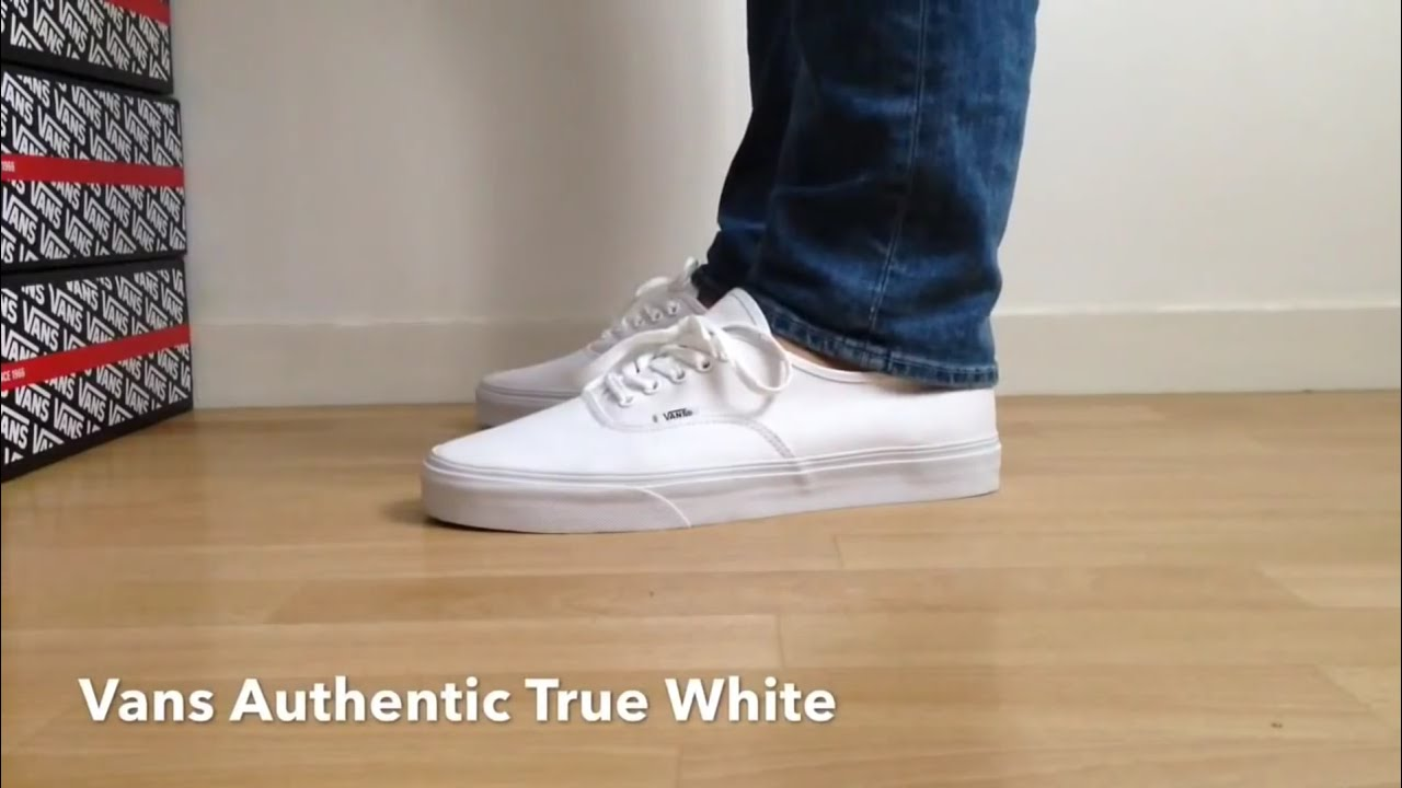 Vans Authentic Navy White Shoes
