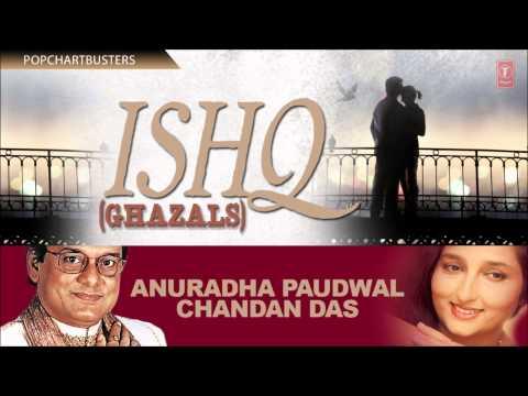 Rote Hain Teri Yaad Mein | Ishq (Ghazals) | Anuradha Paudwal...