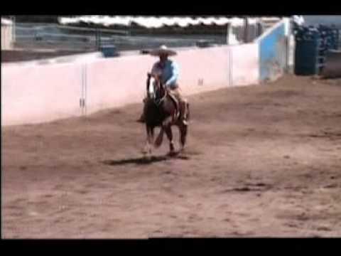 Venta de gargolas en mexico