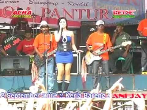 Pantura Secawan Madu Byacha Kumala Live In Sumur,brangsong video
