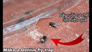 Cách chế 1 chiếc bẫy ruồi cực kì hiệu quả
