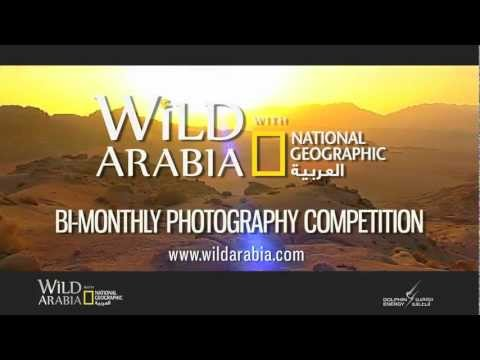 WILD ARABIA with National Geographic Al Arabiya brought to you by Dolphin Energy