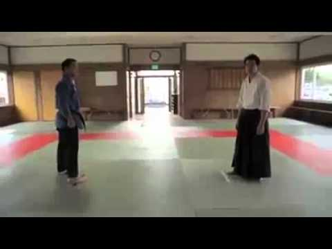 jiu jitsu vs aikido fluido