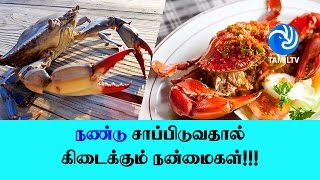 நண்டு சாப்பிடுவதால் கிடைக்கும் நன்மைகள்!!! – Tamil TV