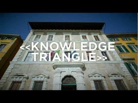 KNOWLEDGE TRIANGLE - video call