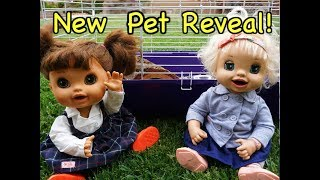 BABY ALIVE Reveals Newest Pet And Family Member!!