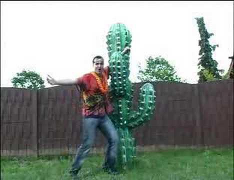 Dj maarten - cactus