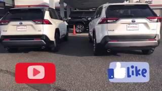 2019 Rav4 Limited Hybrid vs. XSE Hybrid   You Decide   First Look Walkaround