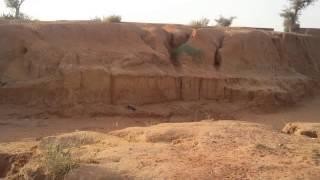 Idi na Dadao