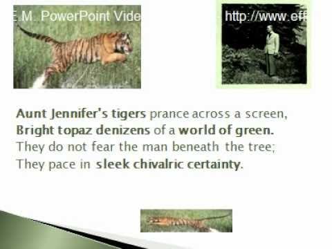Aunt Jennifer's Tigers Summary