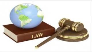 amarline top law19