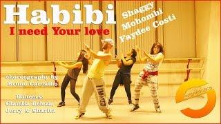 Habibi I need Your love Shaggy Mohombi Faydee Costi
