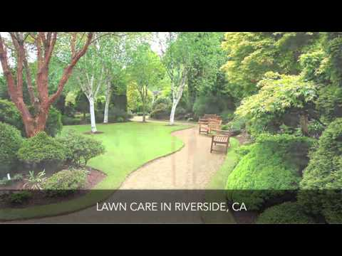 Olague Landscape and Maintanance Inc. Lawn Care Riverside CA