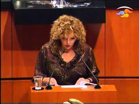 Ley de Energía Eléctrica debe proteger al medio ambiente: Luz María Beristain