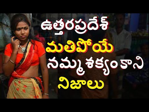 Shocking Facts of Uttara pradesh India  Amazing Facts of Uttara Pradesh telugu Telugu info Media