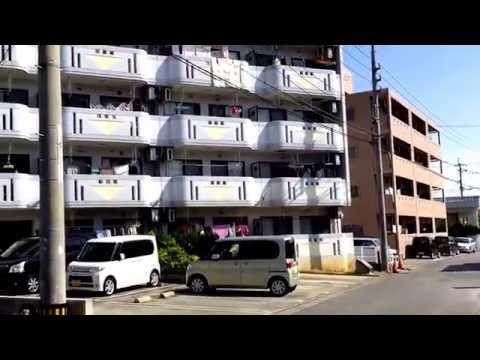 北中城村島袋 2DK 5.3万円 マンション