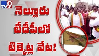 2019 election fever grips Nellore TDP