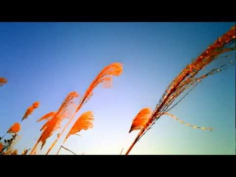 Background Music 22: Soft Piano Music (Download Free MP3)
