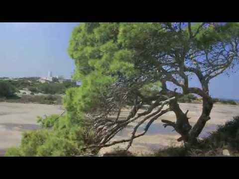 Formentera Travel