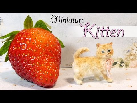 Miniature Kitten Tutorial // DIY Miniature Cat Dolls/Dollhouse