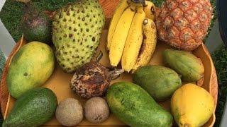 download lagu Soursop And Jamaican Tropical Fruit gratis